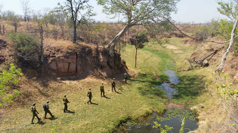 Anti-Poaching Rangers zimbabwe committed to conservation