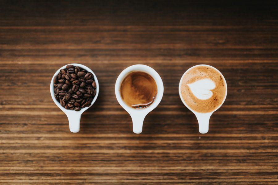 Coffee Drinkers Save Wildlife