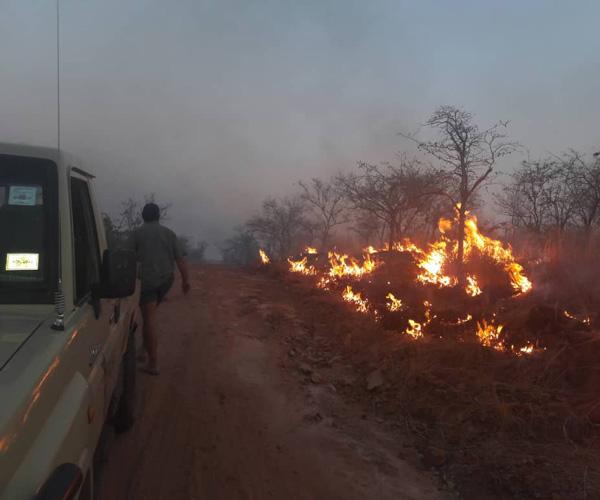 fire season zimbabwe